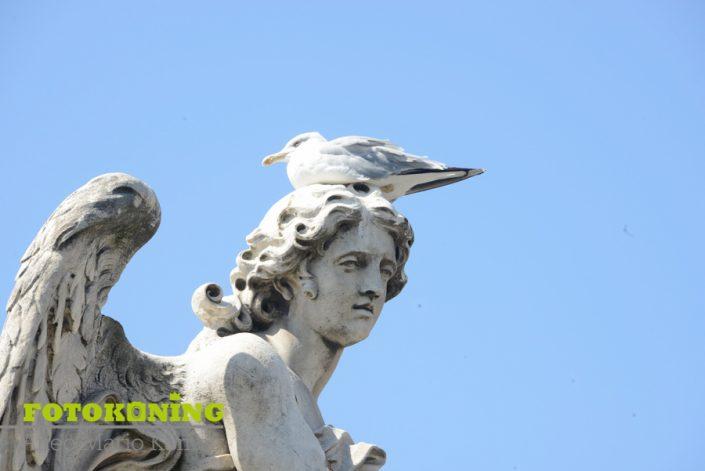 Italië rome beelden