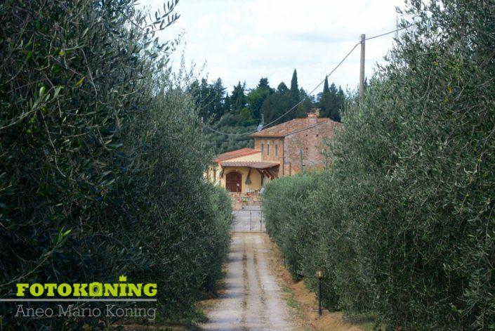landschap buitengebied Italië Toscane